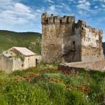 ok_mare_e_monti_girolata_castel_3