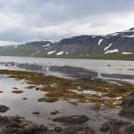 ok_iceland_drangajokull_hike_reykjafjordur16