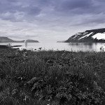 ok_iceland_drangajokull_hike_reykjafjordur19