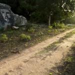 ok_cardiccia_dolmen_05