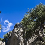 ok_aiguilles_gr20_variante_alpine_10